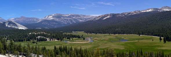 Tuolumne Meadow from Pothole Dome