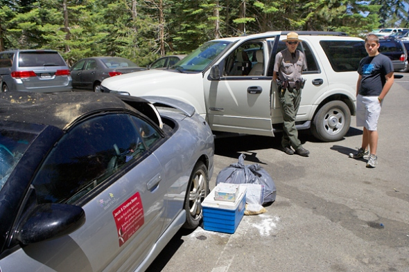 A ranger cleaned up the mess and is waiting for the return of the owners of the car.  A subtantial fine was levied against the for failing to store food properly.