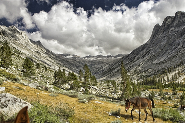 High Sierra Wilderness Photo Workshop